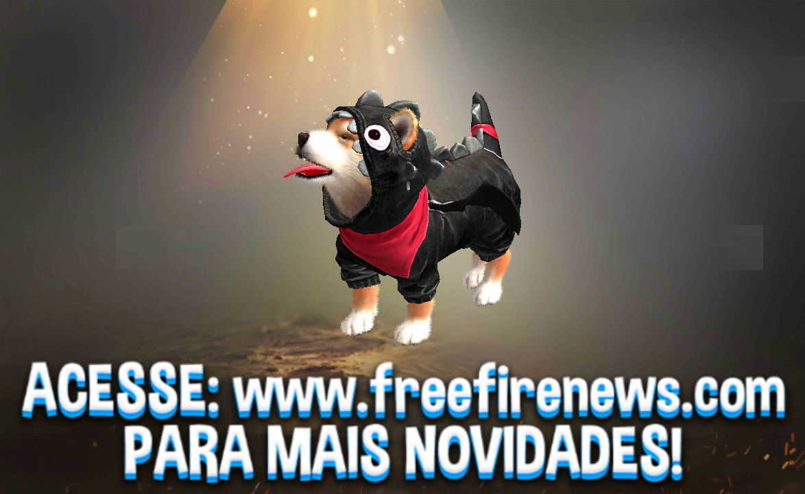 View all posts in SHIBA